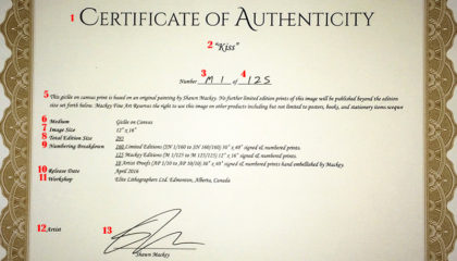 What Is A Certificate Of Authenticity